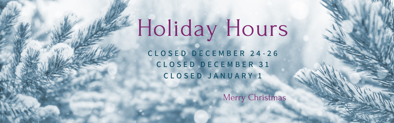 Library is closed December 24, 25, 26, 31 and January 1 for the holidays